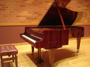 Bosendorfer 225 on stage