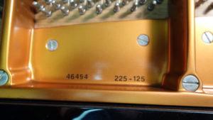 Bosendorfer 225 46494 update