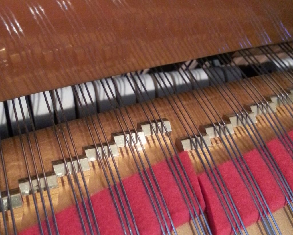 Tuned front duplex scale on Estonia grand piano